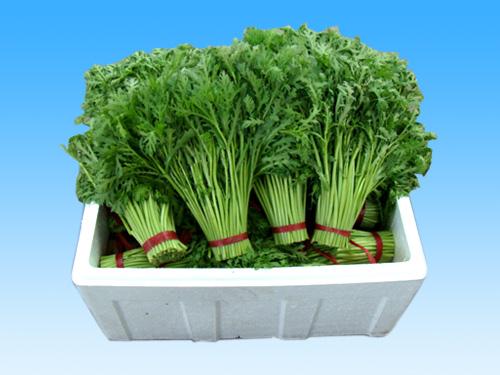 蔬菜保鲜泡沫箱